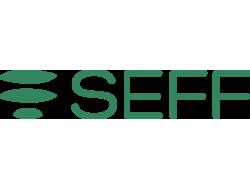 S.E.F.F. SRL