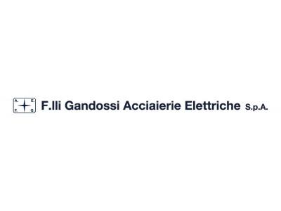F.LLI GANDOSSI ACCIAIERIE ELETTRICHE SPA