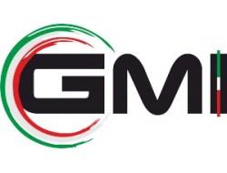 G.M.I. SRL