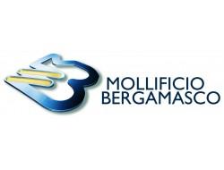 MOLLIFICIO BERGAMASCO SRL